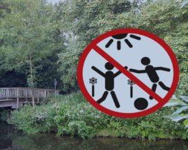 Bürgerstiftung Darf Niedrigseilgarten Im Priesterwald Nicht Realisieren – Naturschutz Lässt Pläne Platzen